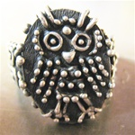 Spotted Owl Rings